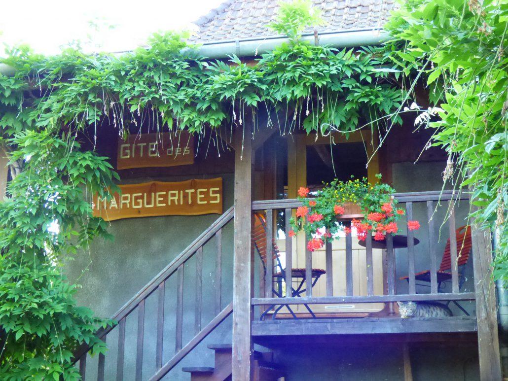 Photo marguerites Façade fleurie - gîte à l'étage
